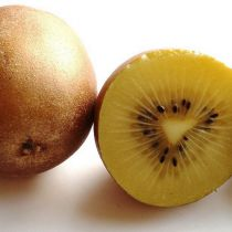 Actinidia* deliciosa \'Golden Kiwi\'