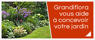 Service de conception de jardin pour les particuliers et les professionnels avec notre �quipe de Grandiflora paysage