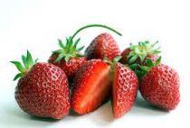 fraisiers rubis des jardinsindex