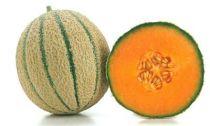 Melon Amigo