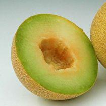 Melon Massada