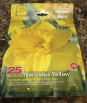 Narcisse \'Jaune par 25\'