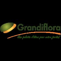 logo grandiflora