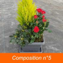 Toussaint Composition  5
