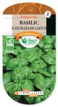 Basilic à feuilles de laitue Bio