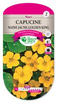 Capucine naine jaune Golden King