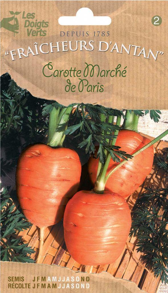 Carotte Marché de Paris