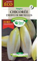 Chicorée Endive de Bruxelles Sachet géant