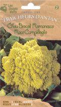 Chou Brocoli Romanesco Race Campidoglio