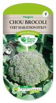 Chou Brocoli vert Marathon Hyb. F1