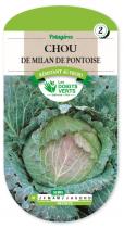 Chou de Milan de Pontoise 3
