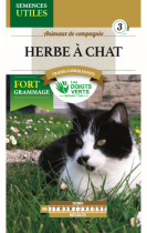 Herbe à chat ECO