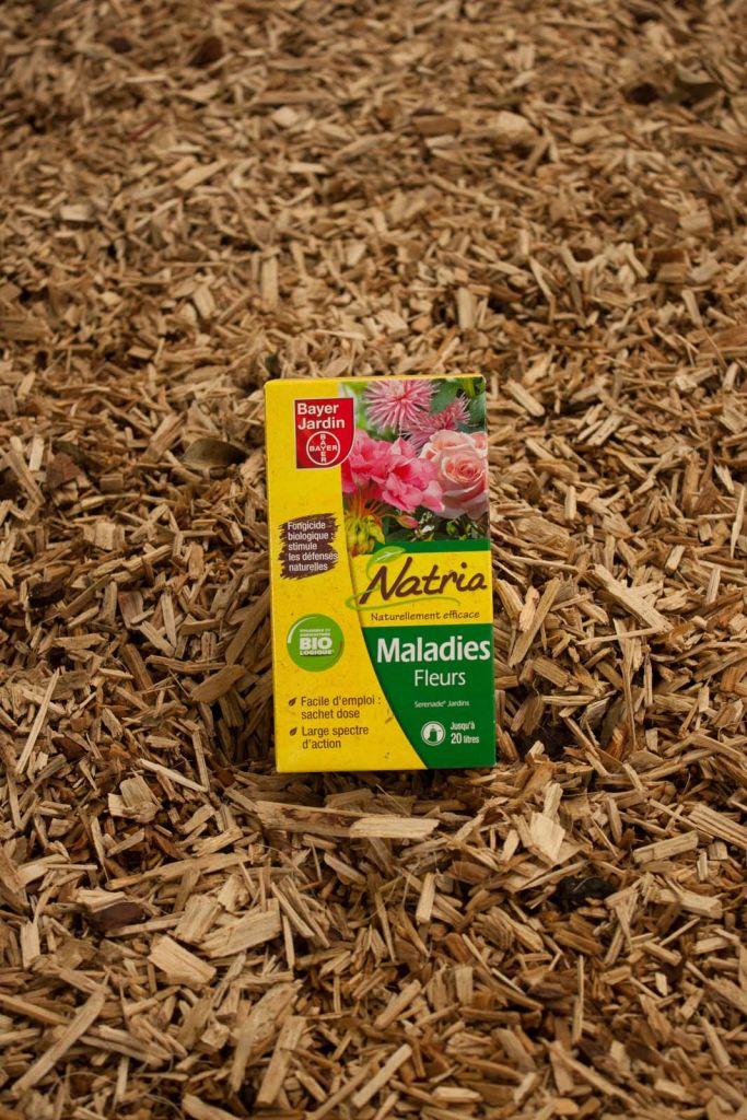Maladies fleurs - NATRIA
