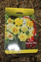 Narcisse Double