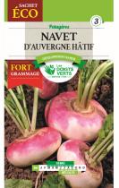 Navet d\'Auvergne Eco