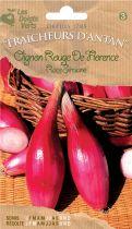 Oignon rouge de Florence race Simiane
