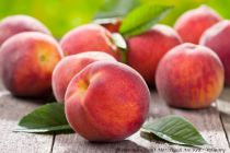Pêcher nain Fruit Me® Peach Me Red - Prunus persica