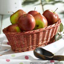 Pommier* \'Pomme des Moissons\'
