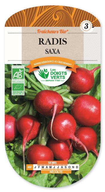 Radis Saxa Bio