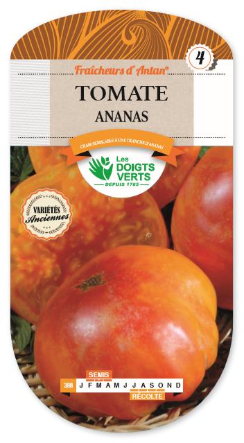 Tomate \'Ananas\' fraicheurs d\'antan 4