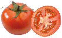 Tomate greffée Fantasio F1