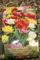 Tulipe double mélange